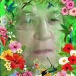 Geni Castilho Profile Picture