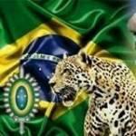 LBC-Limpando o Brasil da corrupç profile picture
