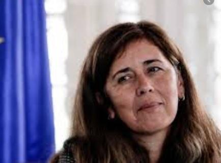 Venezuela pede a saída de Embaixadora da União Européia do país. – POLÍTICA DA LUZ BRASIL