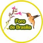 Foro de Brasília Profile Picture