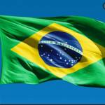 Patrícia Brasil Profile Picture